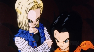4. ANDROID 17 & 18